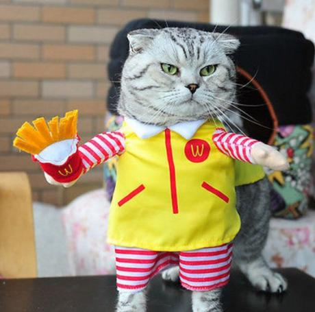 McDonald's Cat Costume