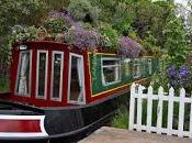 Canal River Trust Launches Inaugural 'boats Bloom' Awards
