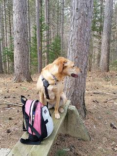 Hiking Gear... A Question To Readers