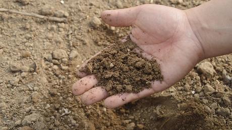 unproductive soil