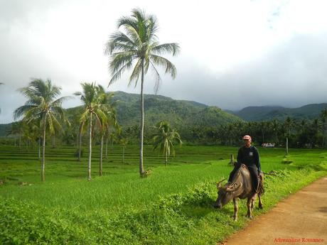 Farmer in Barangay Sampao