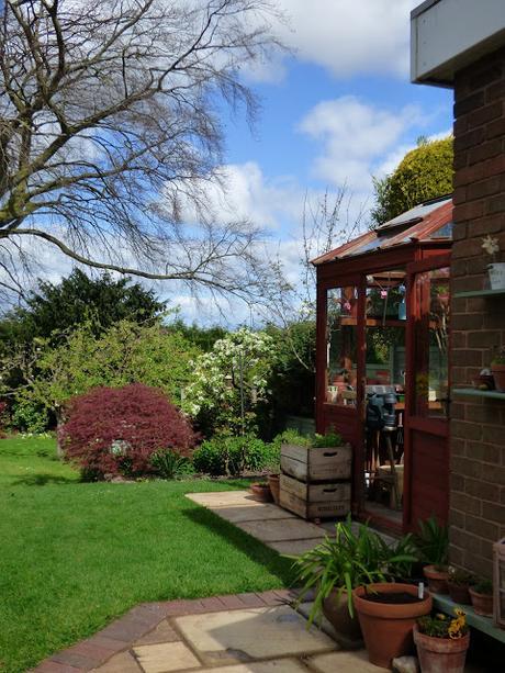 April Garden Shropshire Greenhouse