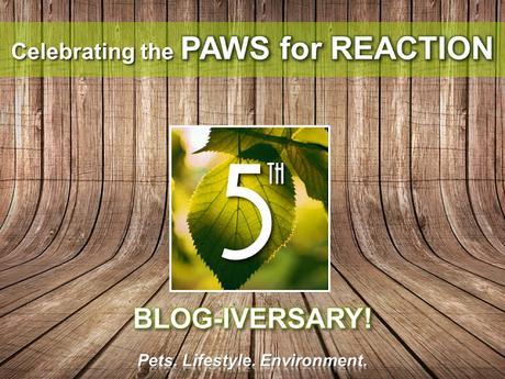 #Celebrating #PawsForReaction #Ontario #PetBlog 5th #Anniversary