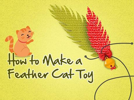 [Infographic] Chapter #1 – How to make a DIY feather cat toy in 5 mins
