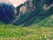 Things Ladakh