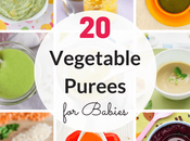Quick Easy Vegetable Purees Babies