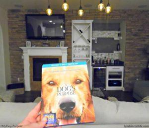 A Dog's Purpose; How The Film Made Me Realize #MyDogsPurpose