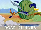 Desire Causality Road Runner Cartoons