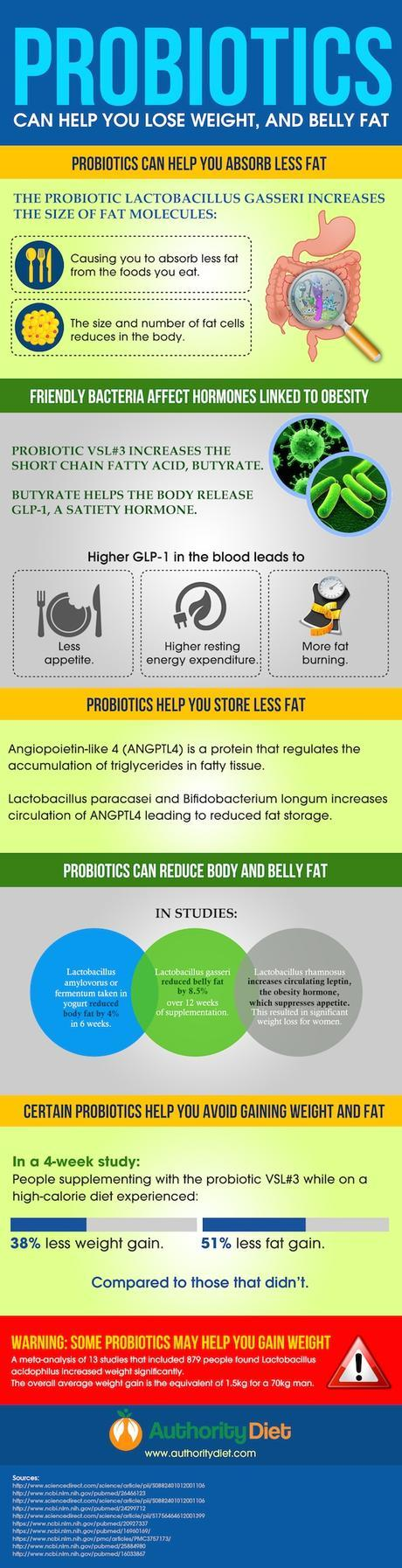 Can Probiotics Help with Weight Loss, and Burn Belly Fat?