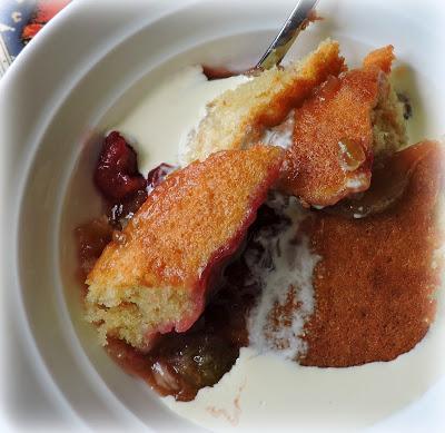 Rhubarb & Raspberry Pudding Cake