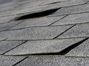 Signs That Should Replace Your Flat Roof