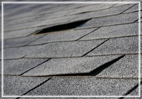 3 Signs that You Should Replace Your Flat Roof