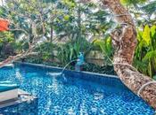 Plan Idyllic Trip Bali Resiliently Vibrant Hotels