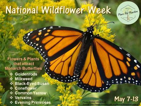 National Wildflower Week May 7-13