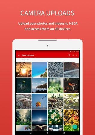 Mega - Paperblog
