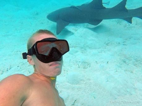 Another kind of confidence: shark selfies?!
