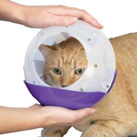 """Best Cat Muzzle Reviews May/2017- How to stop a cat from """"meowing""""?"""