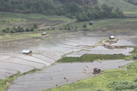 DAILY PHOTO: Khonoma Terraces