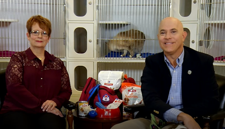 How to prepare your pets for natural disaster Dr. Lowery and Rich Anderson interview