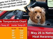 #NoHotDogs #Car #Temperature #HeatAdvisory #Dogs #NationalHeatAwarenessDay #May26