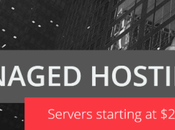 M3Server Review: Ultimate Managed Hosting Pros Cons