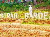 Sirao Flower Garden: Little Amsterdam Cebu
