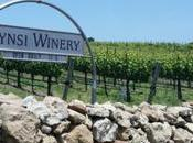 Kynsi Winery: Within Edna Valley