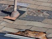 Factors That Affect Your Roof's Overall Condition