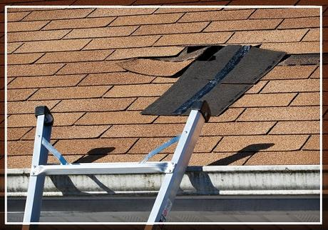 Your Handy Guide For Post-Winter Roof Inspection