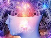 RESPONDblog: Case from Consciousness
