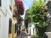 Spain: Marbella Town