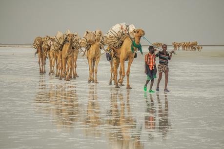 Ethiopia Danakil Depression Tour: Should You Do It?