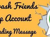Crash Friend's Whatsapp Just Sending Message