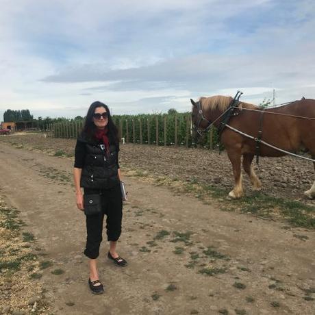 Wine Writer Confidential  | № 8