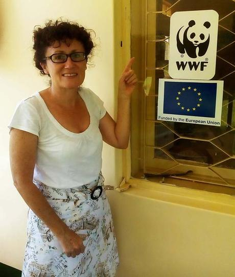 Diary of a Muzungu. WWF office. Conserving Rwenzori Mountains