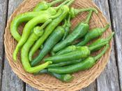 Pickled Green Chillis