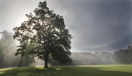 Summer Festival Preview: Tanglewood