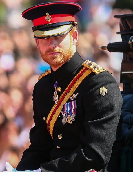 DM: Prince Harry, like most royals, 'cherishes a terrific sense of entitlement'