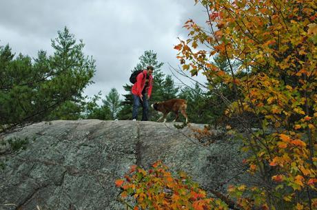 Keira's Provincial Park dog tours: High Falls, Algonquin Park, Ontario Canada