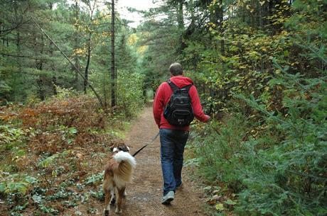 Keira's Provincial Park tours: High Falls, Algonquin Park, Ontario Canada