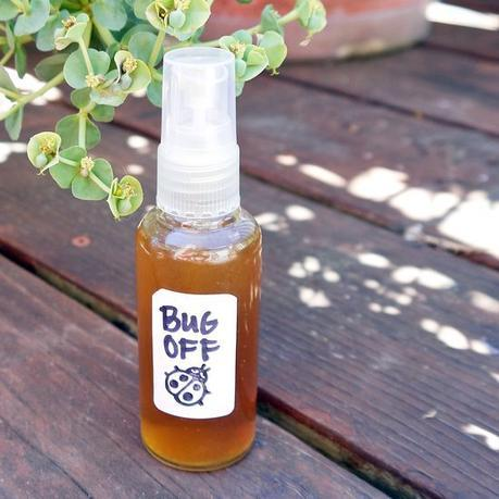 """Here's A """"Scent-sational"""" DIY All-Natural Bug Spray To Keep Those Pesky Mosquitoes Away!"""