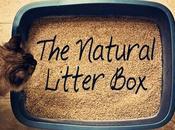 Best Litter Reviews Updated Jul/2017 Buyer's Guide