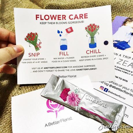 A Better Florist: Flowers That Speak Volumes