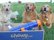 Nerf Tennis Ball Blaster #ChewyInfluencer