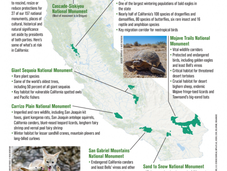 """Trump """"Review"""" Includes Seven California's National Monuments"""