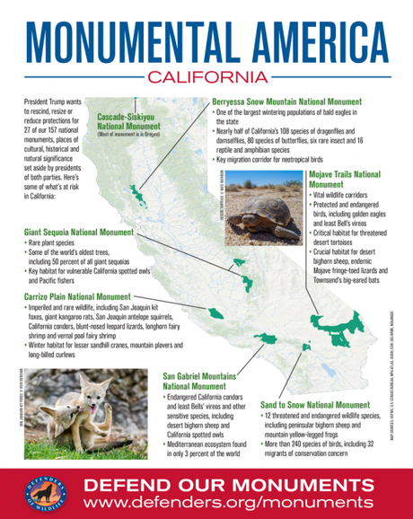 "Trump ""Review"" Includes Seven of California's National Monuments"