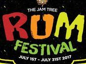 Festival Tree Clapham, London