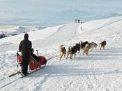 Arctic Adventurers Should Know