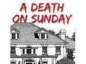 What's Better Than Murder Mystery Summer Reading? That's Sale! Death Sunday Tish Owen.