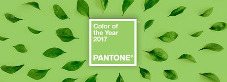 The usage of colors in the life of designers: The Pantone Color Guide in depth!